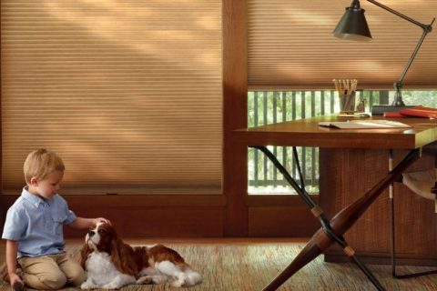 Blinds-Window-Treatments-Shutters-Shades-window-coverings-Albuquerque-Corrales-Bernalillo-Rio-Rancho-New-Mexico