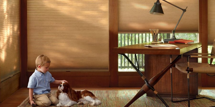 Honeycomb Shades Window Shadings Shades Of The