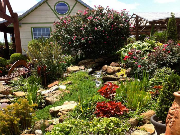 shades of texas nursery landscaping