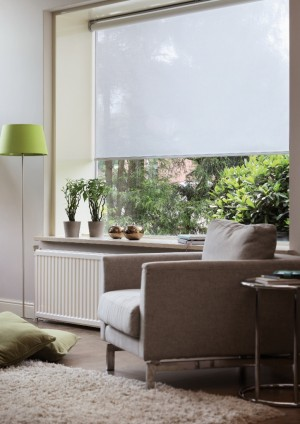Classic Roller Shade (725x1024)