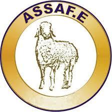 logoAssafe