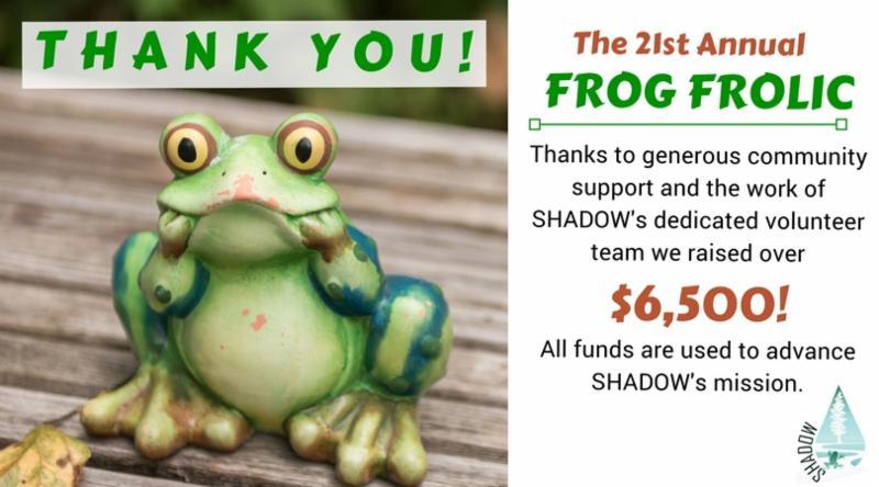 Frog Frolic Wrap Up