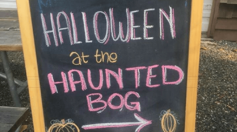 Halloween in the Haunted Peat Bog Wrap Up