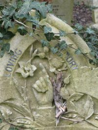 Thanks to the winter die-off whicnow reveals the rose carved on the opposite side of the finger. A full blown one and bud. This is to John James Lumsden who died on 25 November 1905 ©Carole Tyrrell