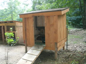 shady oak and sassafras chicken free range shelter