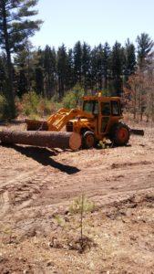 Massey 30B logs