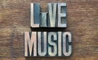 Live Entertainment at Shady's Bar & Pub in Brooklyn, MI