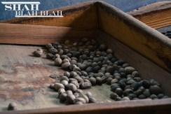 Nutmeg, Grenada's biggest export.