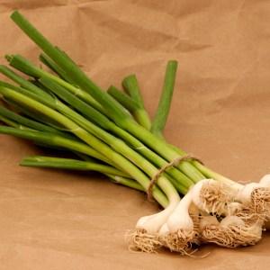 green_garlic.jpg
