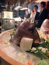 real fish head on ice