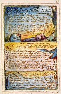 songs-of-innocence-and-of-experience-illustrations-blake7