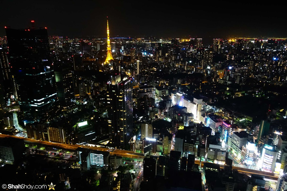 Fantastic Tokyo Accommodation with Tokyo Tower view