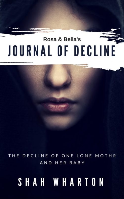 Rosa & Bella's Journal of Decline: A Psychological Horror