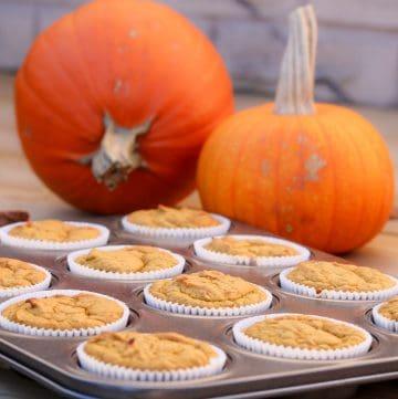 pumpkin date cupcakes