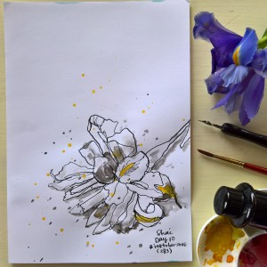 Iris Ink - Original Hand Drawn Floral Illustration