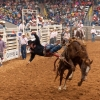 Shaie Williams for AGN Media. Sterling Crawley gets a no score in the saddle bronc riding at the Tri State Fair PRCA Rodeo held at Amarillo National Center in Amarillo, TX on September 24, 2016.