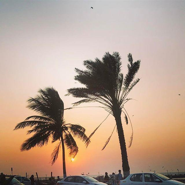 #sunset #dusk #beach #trees #nature #latepost