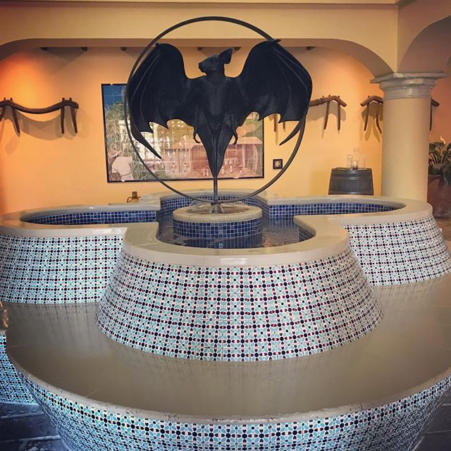 The Bacardi logo is a bat 🦇! And it was made so because the new distillery when bought was full of bats. They though it is meant to bring good luck and fortune! And I suppose it proved! #casabacardi #bat #logo