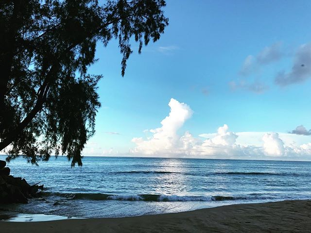 #beach #beauty #nature #waves