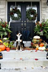 Fall Porch Décor Ideas in Cozy and Cool Style (32)