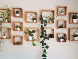 Indoor Vertical Garden Concept with Brilliant Ideas for Easy Maintenance Part 23