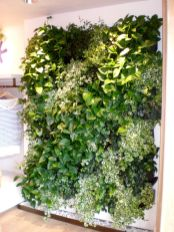 Life Plant Decorations for Indoor in Vertical Hanging Pots Part 39