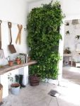 Life Plant Decorations for Indoor in Vertical Hanging Pots Part 40