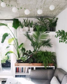 Life Plant Decorations for Indoor in Vertical Hanging Pots Part 51