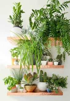 Life Plant Decorations for Indoor in Vertical Hanging Pots Part 59