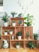 Life Plant Decorations for Indoor in Vertical Hanging Pots Part 70