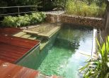 Natural swimming pool trend cleanwater pools that blend with your landscape Part 12