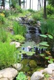 Amazing waterfall ideas giving the best look and panoramic schemes for your landscaping style Image 6