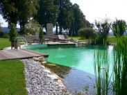 Best trending natural swimming pool with natural fresh cleanwater filter system (11)