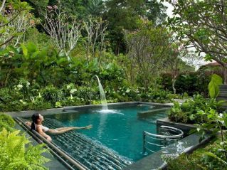 Best trending natural swimming pool with natural fresh cleanwater filter system (3)