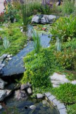 Best water garden style rich of natural accents with stones and aquatic plants compositions Image 18
