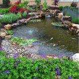 Best water garden style rich of natural accents with stones and aquatic plants compositions Image 4