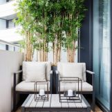 Brilliant apartment balcony ideas converted into cozy living space Image 3