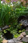 Clever exterior update showing different fresh fish pond designs Image 21