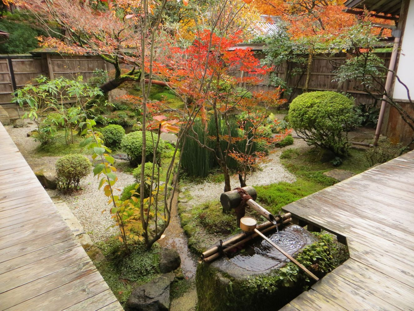 Green outdoor ideas with calming vibes from Zen garden style showing harmonious and balanced various natural elements Image 36