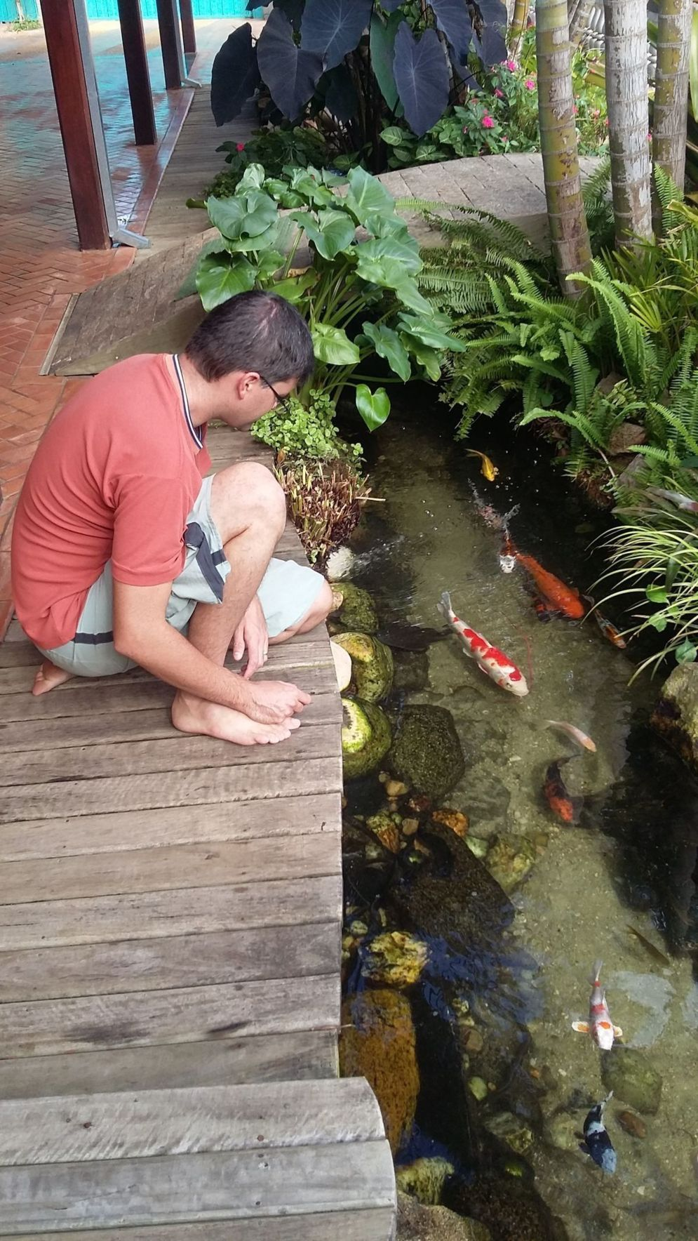 Inspiring small fish pond designs to upgrade the outdoor landscape for more lively and refreshing Image 31