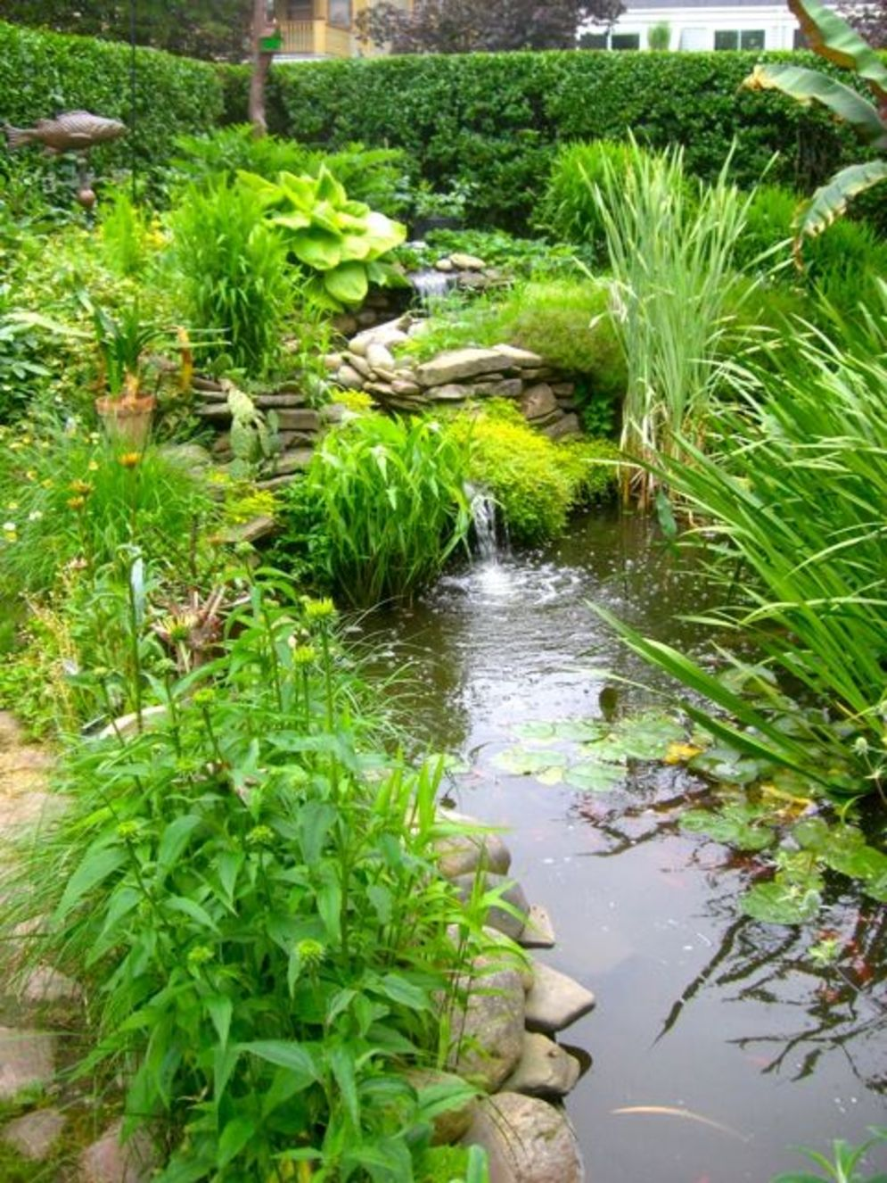 Water garden ideas for more natural backyard feeling with beautiful aquatic plants and ponds Image 27