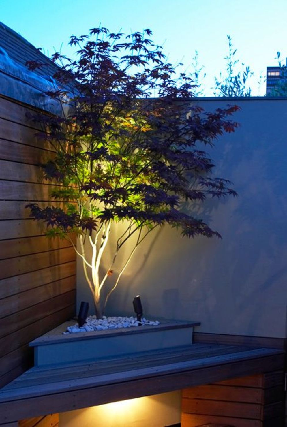 Beautiful garden lighting ideas with ground level ambient light giving luxurious resorts look Image 19
