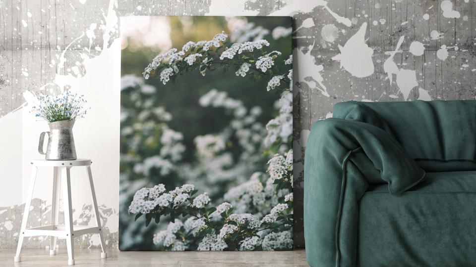 d corez vos murs avec photo sur toile fr shake my blog