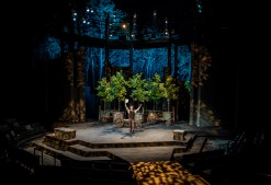An actor rejoices onstage in the American Players Theatre's production of As You Like It.