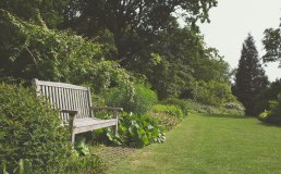 Gardening Basics in Lancaster, PA- Get the Most Out of Your Newfound Green Thumb