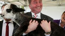 Barnaby-Joyce.jpg