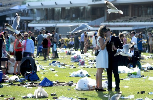 Horse Racing - Melbourne Cup - Flemington Racecourse