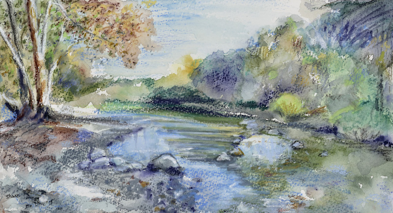 creek stillness, shakti sarkin