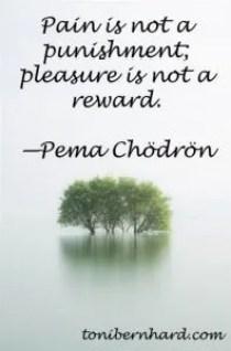 Buddha Quotes - Pema Chodron