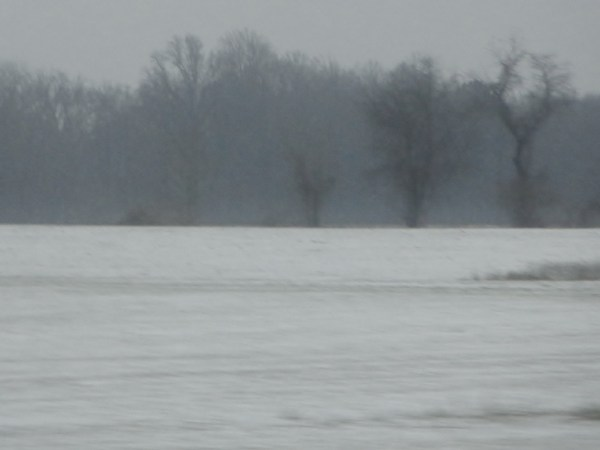 Winterfields from Shalavee.com